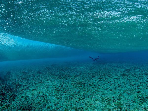 欧罗帕岛很少有潜水者勇于探索欧罗帕岛四周的珊瑚礁,因为这里位在莫三比克海峡中以巨大涡流、含有丰富营养的涌升流、蜿蜒的海流以及壮观的大浪而为人所知的一片水域。 P
