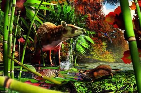 这是一个始新世早期(5200万年前)栖息于不列颠哥伦比亚省北部一个湖泊周围的雨林中的动物群落的重建图。古貘Heptodon在浅溪中饮水,而前景处,小小的原始刺猬