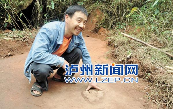 四川叙永发现8000万年前禽龙行迹化石