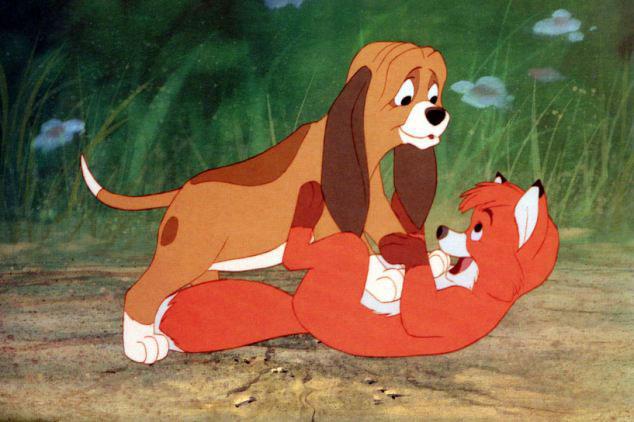 如同迪士尼卡通动画——《狐狸和猎犬》的真实版本