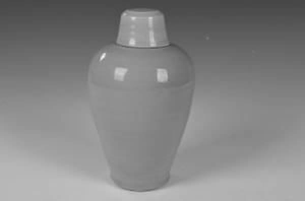 胡夫人墓中龙泉窑梅瓶