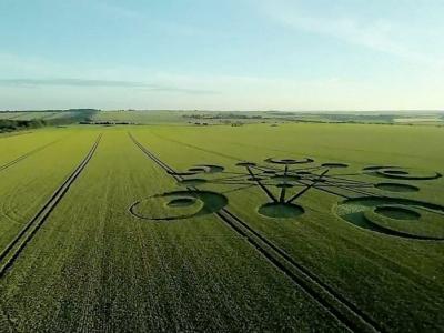 英国多塞特郡农田中惊现2014年首个麦田怪圈