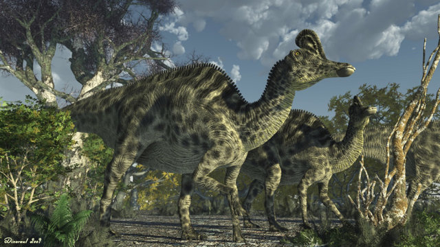 发现在墨西哥境内的威拉佛龙(Velafrons),这是一种食草恐龙。