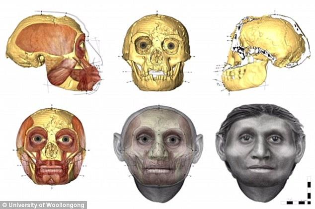 新研究表明弗洛里斯人竟是已知最早的唐氏综合症患者