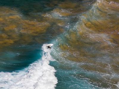 澳洲新南威尔士的棕榈滩冲浪者