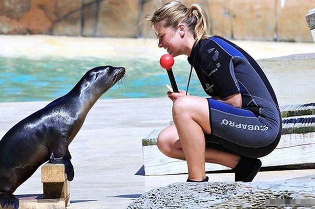 英国27岁女子情迷海洋生物 研究海狮获颁硕士学位