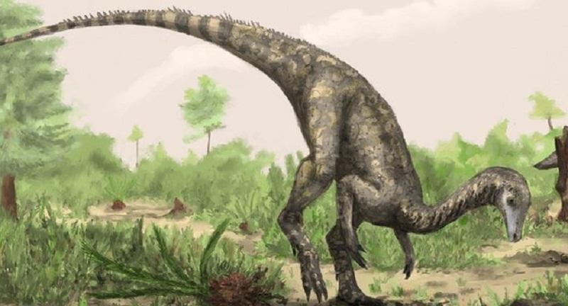 第一只恐龙