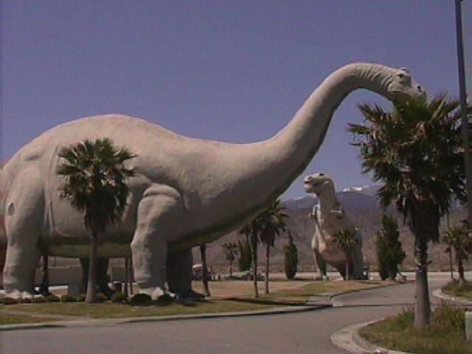 最大的恐龙