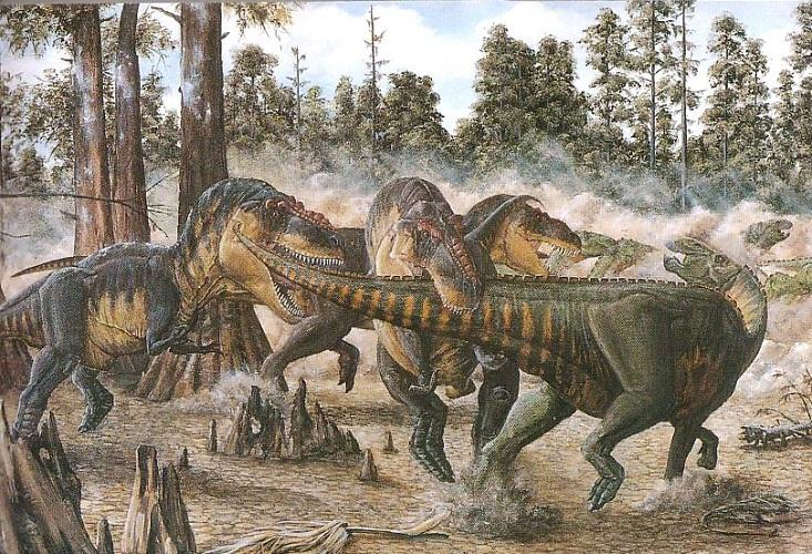 恐龙群居吗