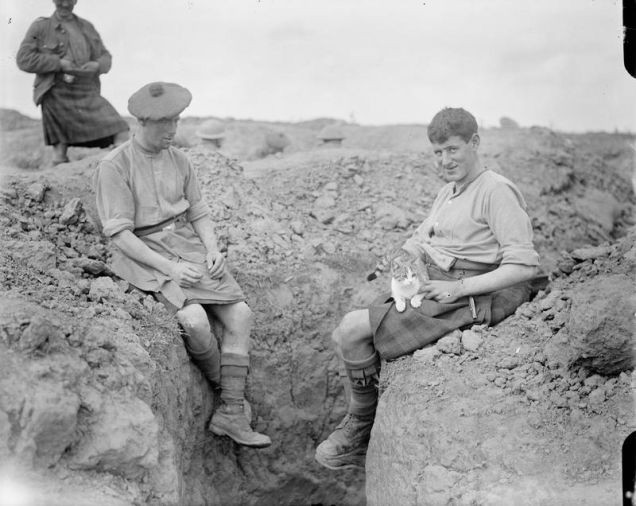 1916年8月25日,2名士兵和猫。