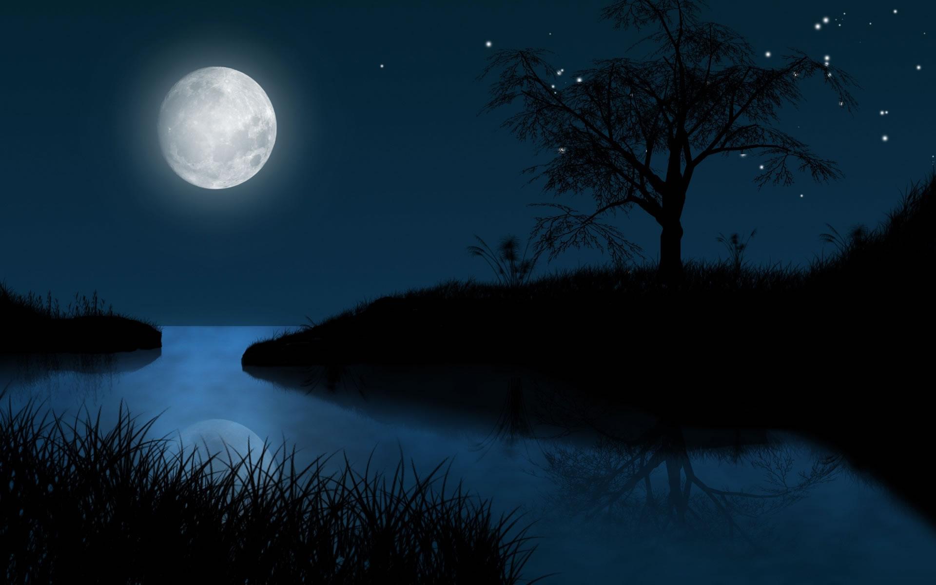 资料图:满月