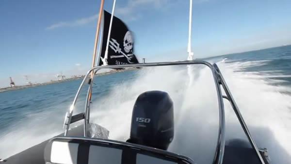 海洋牧人组织发布纪录片揭露澳洲西澳省大规模残忍猎杀鲨鱼