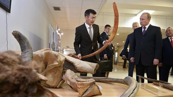 """俄罗斯总统普京参观远东猛犸博物馆 问是否能""""克隆""""这些古老生物"""
