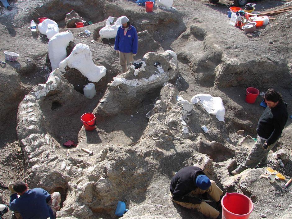 """阿根廷发现比波音747客机还重的7700万年前""""无畏龙""""化石"""