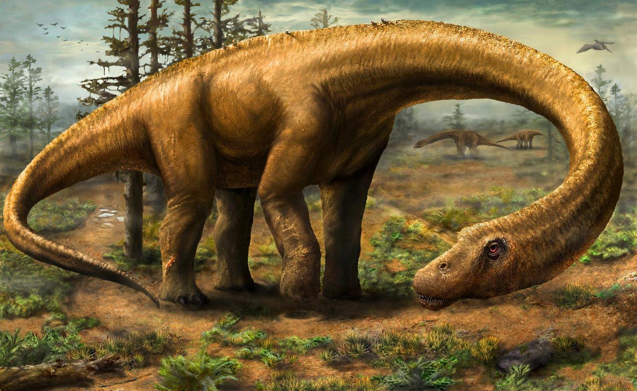 """新发现的恐龙""""无畏龙""""Dreadnoughtus schrani可能是曾经在地球上行走的最大动物"""