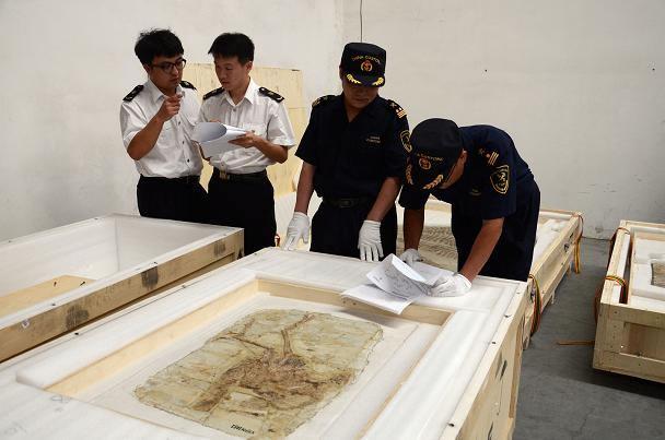 沈阳海关关员与出入境检验检疫人员共同验放出境参展古生物化石