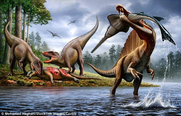 摩洛哥境内的撒哈拉沙漠发现第一只已知会游泳的恐龙——埃及棘龙(Spinosaurus aegyptiacus)
