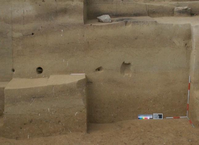 奥地利的考古发掘点Willendorf II