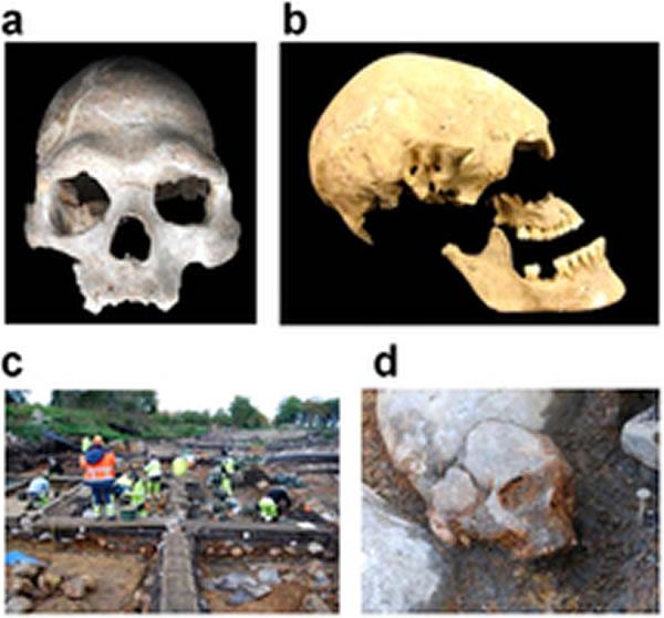 欧洲人的血统可追溯至3个高度分化、彼此不同的远古人群