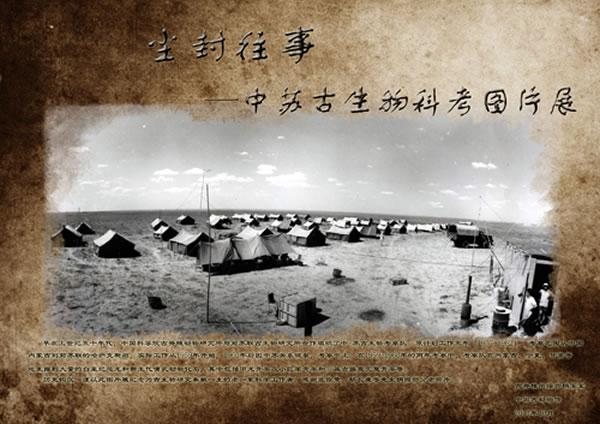 """中国古动物馆推出""""中苏中亚古生物考察图片展"""""""