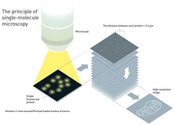 图为单分子荧光显微镜的原理图解