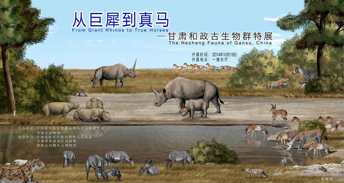 """中国古动物馆将推出""""从巨犀到真马——甘肃和政古生物群特展"""""""