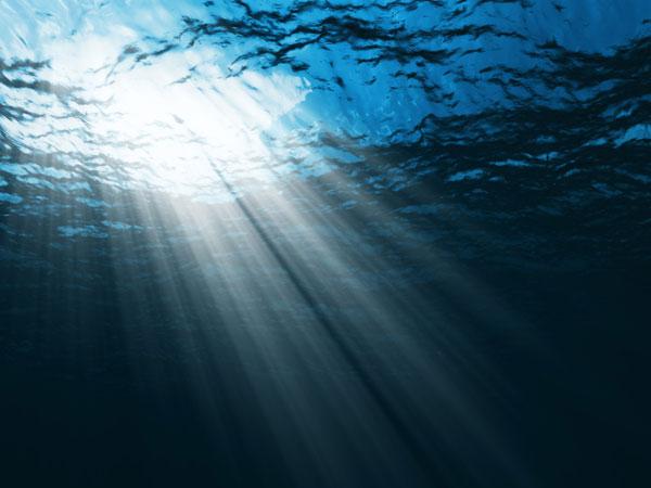 联合国:海洋酸化或造成每年上万亿美元损失