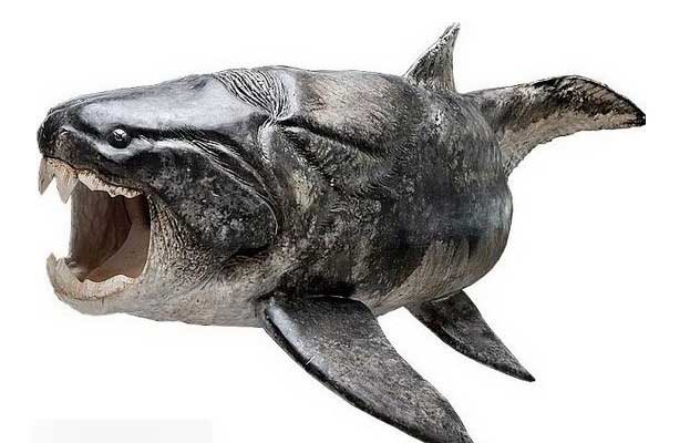 盾皮鱼纲(Placodermi)是一类已经灭绝的鱼类,大约生活在志留纪到泥盆纪,共繁衍了近7000万年。