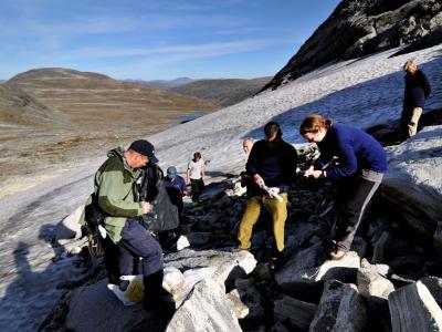 冰川消融地貌变化带来的考古学春天