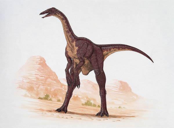 科学家曾经以为奇异恐手龙是凶猛的捕食者
