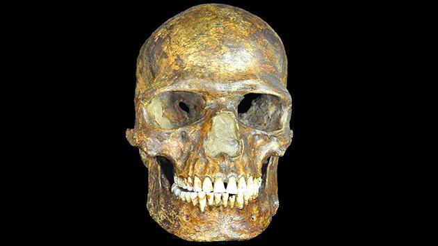 DNA分析发现3.6万年前一个迄今不为人知的人种