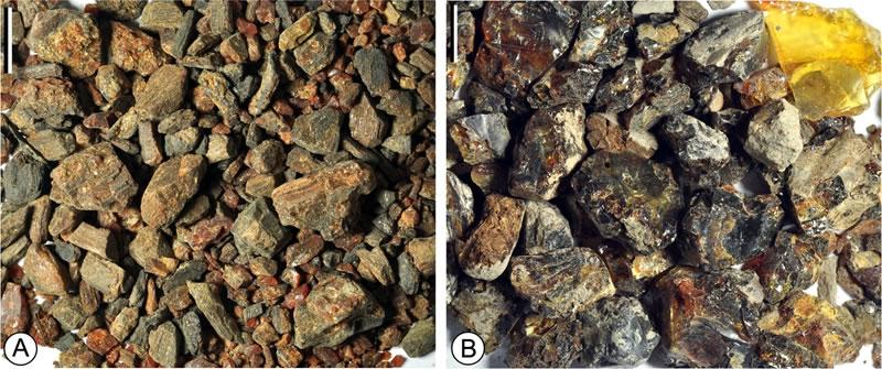 西峡琥珀(A)和漳浦琥珀(B)