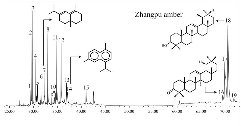 漳浦琥珀总离子流色谱图