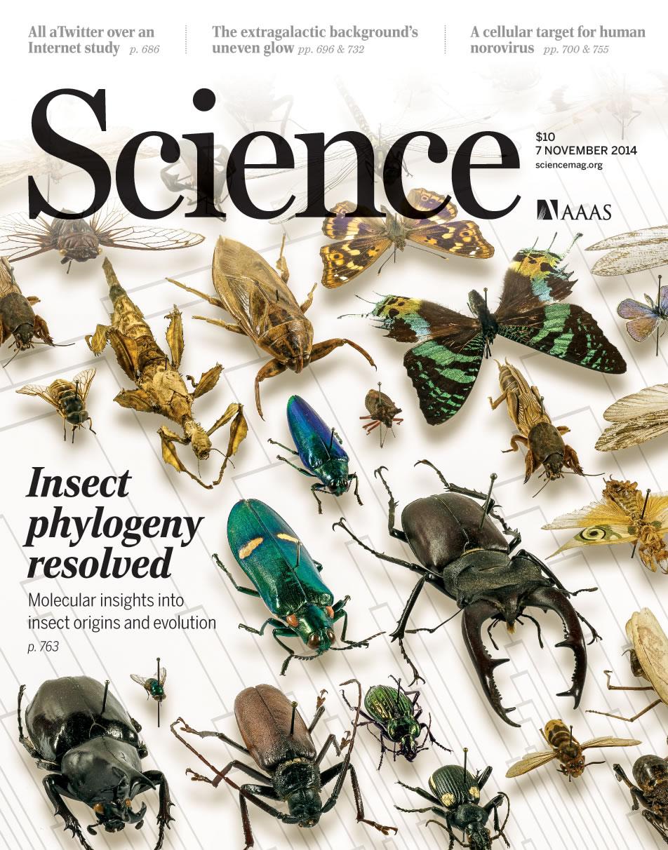 研究成果发表在美国《科学》杂志上