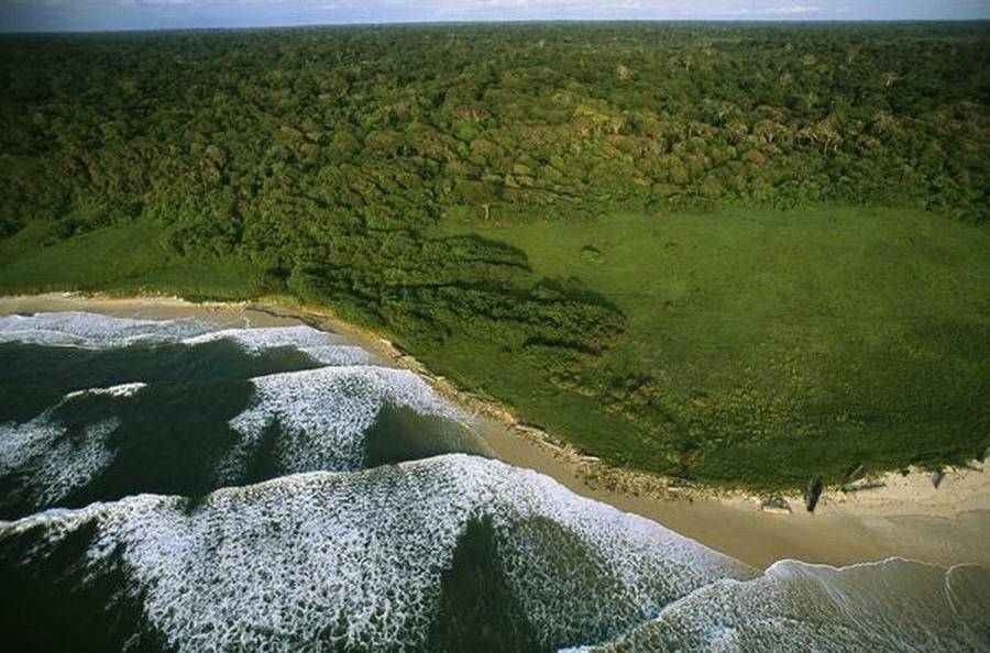 """如图所示,这是加蓬卢安果国家公园的大西洋海岸,它被命名为""""非洲最后的伊甸园""""。2002年,加蓬政府建立了13个国家公园,其中包括卢安果国家公园。"""