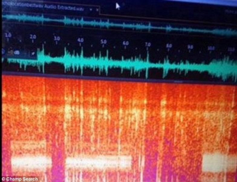 """或许尼斯湖水怪在遥远的大西洋有""""近亲"""",目前,隐生动物学家凯蒂-伊丽莎白和丹尼斯-哈尔在美国佛蒙特州尚普兰湖通过录音探测到""""神秘水怪"""",他们使用水诊器系统监控回"""