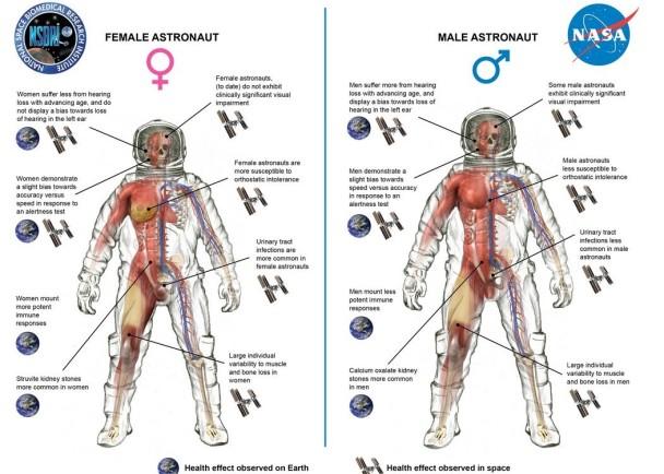 NASA公布男女太空人登上太空后的身体变化,发现男性较能适应。
