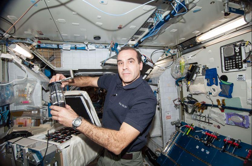 数据显示,男性在太空的直立耐受能力较高。