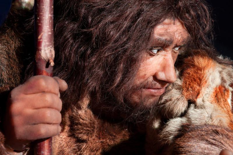 新证据表明尼安德特人是独立于现代人类(智人)的另一个物种