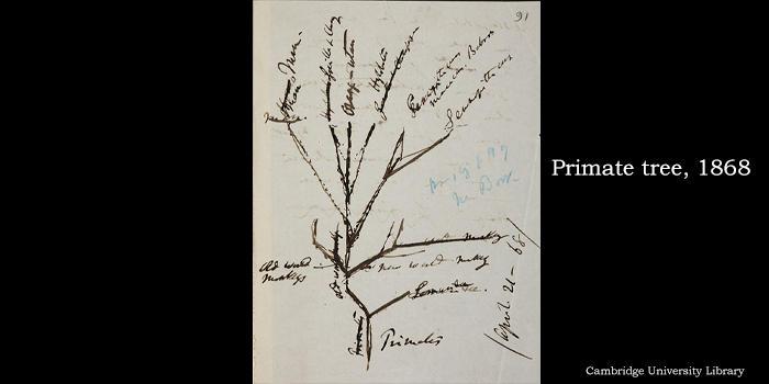 达尔文进化论产生和发展过程的数字档案上线