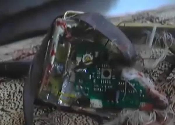 雀鸟身上装有电子仪器和炸弹。