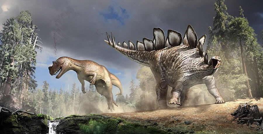 刺状尾部是剑龙的一个防御手段,科学家知道这是剑龙的强大武器。巴雷特教授指出,曾发现一具异龙骨骼化石样本遭受刺伤,受伤处正好与剑龙刺状尾部外型相符。