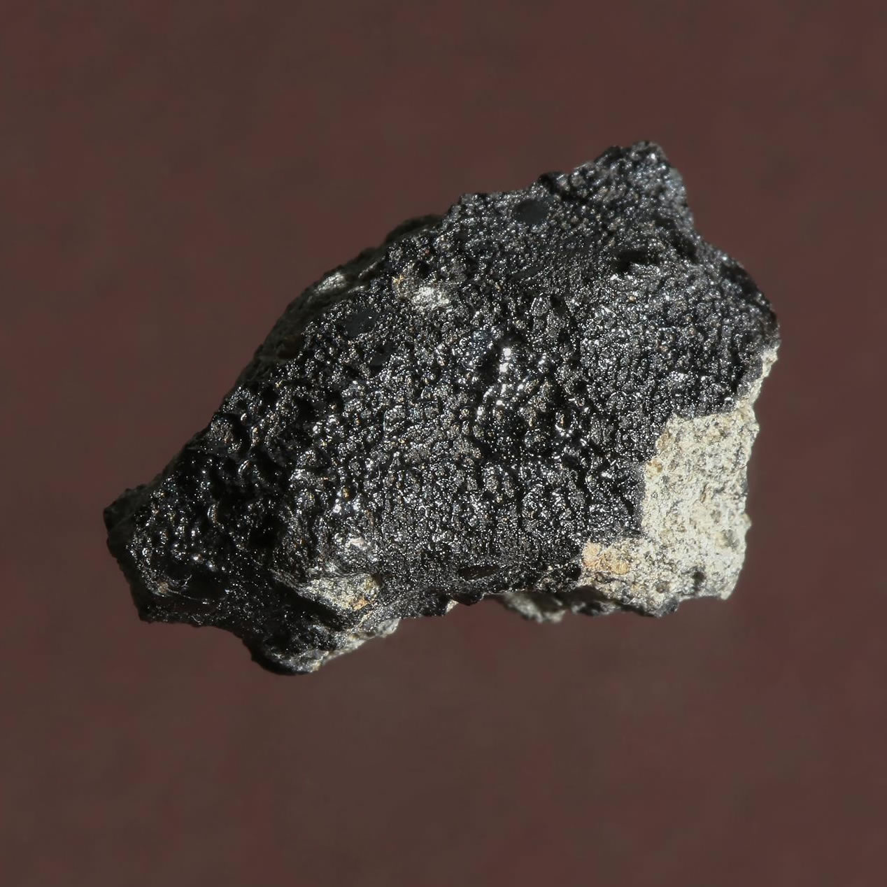 摩洛哥陨石中发现碳成分,火星上或曾经存在生命