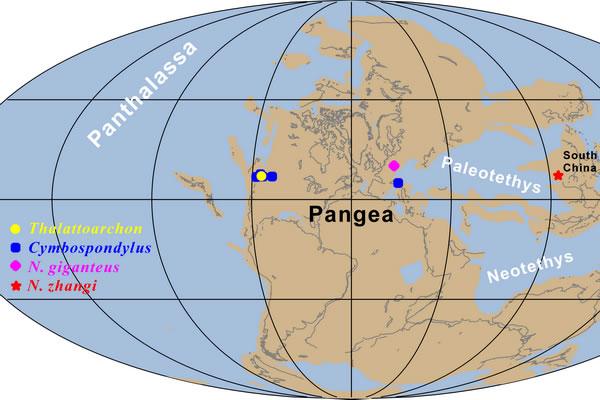 图四:巨型顶级捕食者在中三叠世全球海洋的分布图