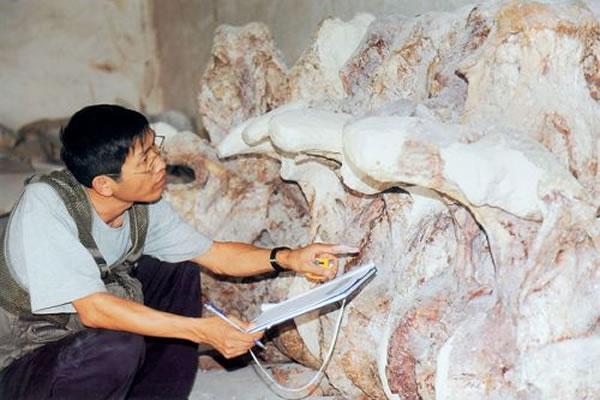 吕君昌博士在研究椎体排列顺序