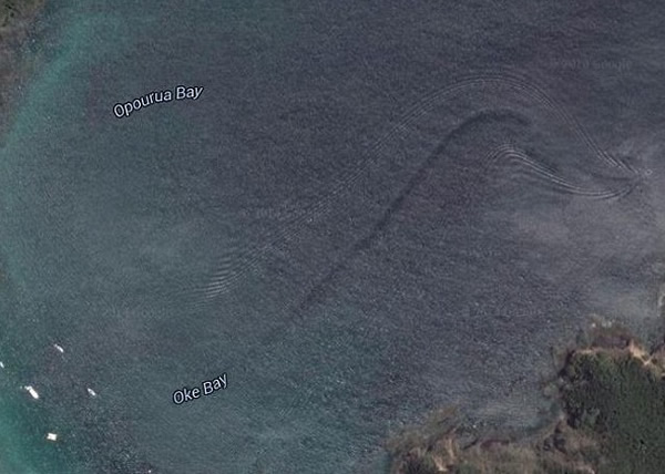 Google Earth在新西兰海域拍到疑似巨大水怪照
