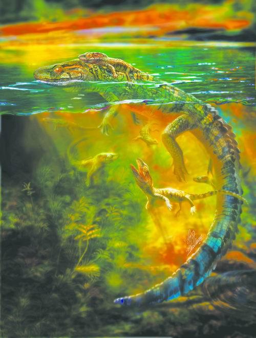 发现由6个幼年个体围绕一个成年个体组成一个家庭的离龙类——朝阳喜水龙化石