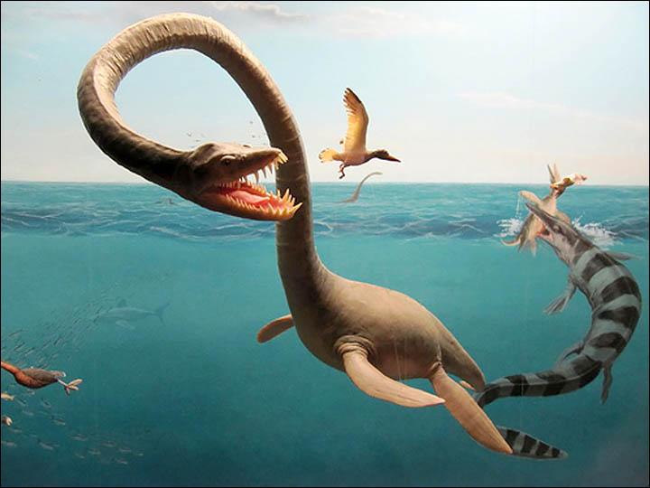 蛇颈龙复原图
