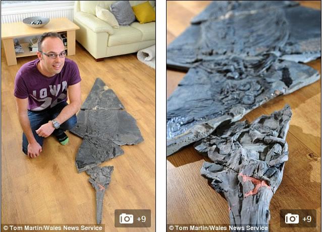 """据悉,乔纳森和他的哥哥花费了一天时间,挖掘出重量达60公斤的鱼龙骨骼化石,乔纳森将它描述为""""庞然大物""""。"""