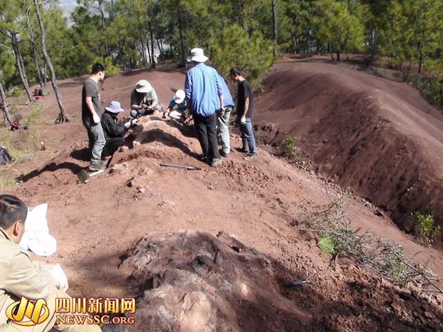 2014年12月中旬,在会理县南阁乡一山顶现场,专家正在对埋藏的恐龙化石进行清理,会理县文管所供图